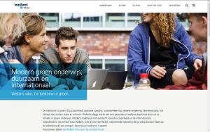 Screenshot website Wellant MBO